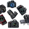 Entry Level DSLR Cameras: Which One Should You Choose?